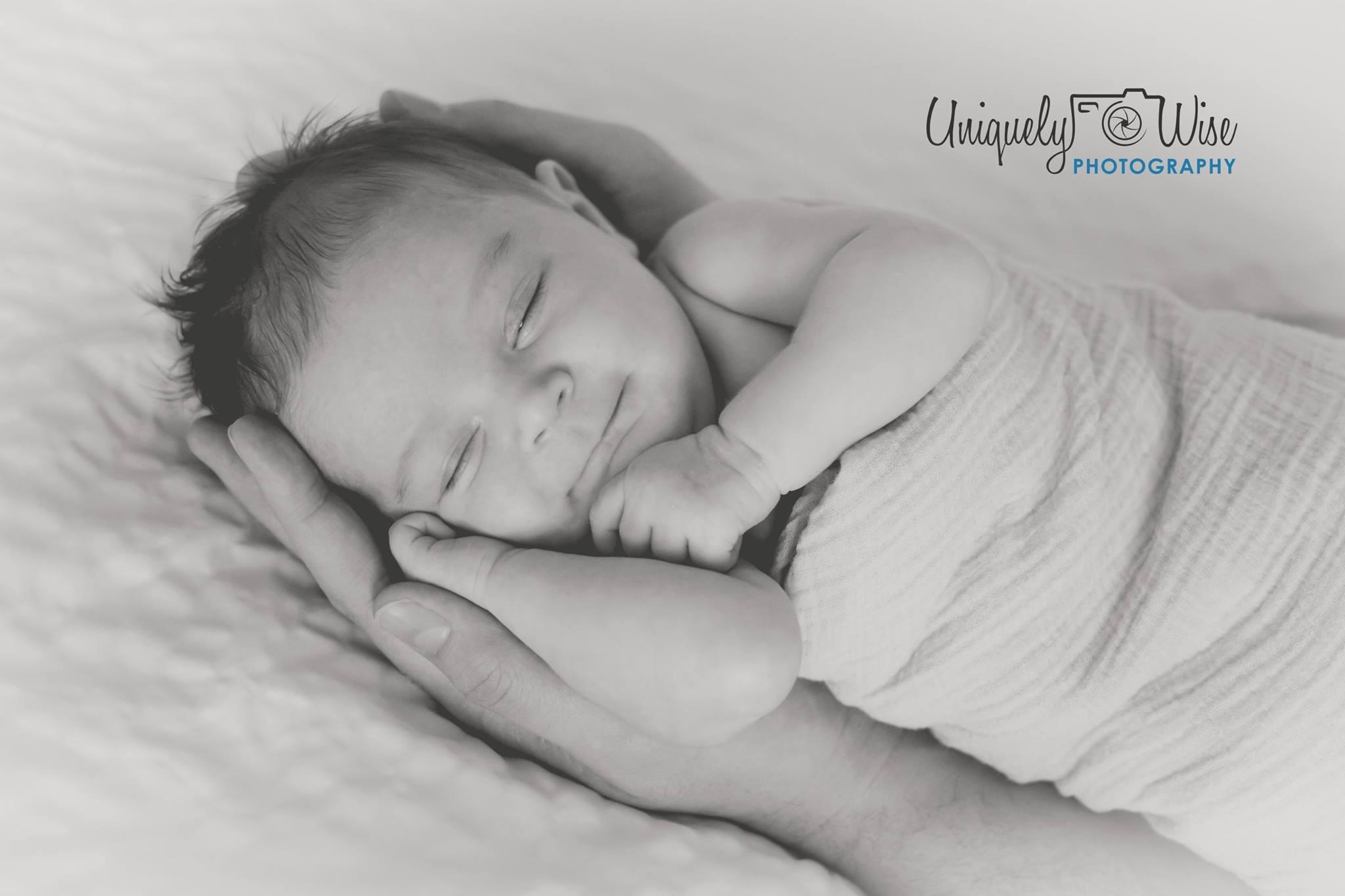 Kristy's baby Menolly
